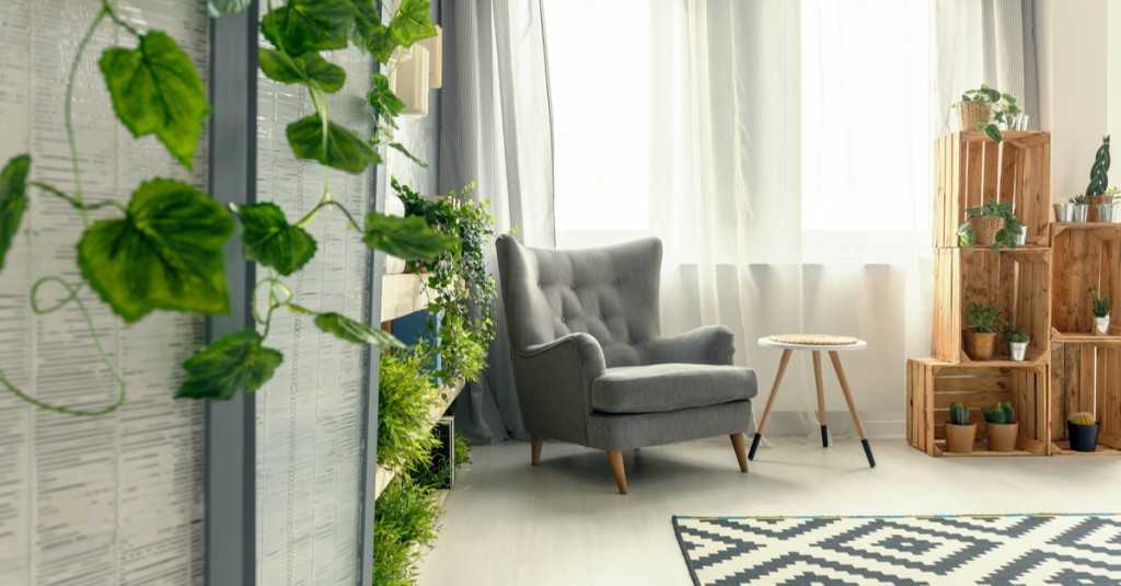 Tips To Help Maximise Natural Light In Your Home